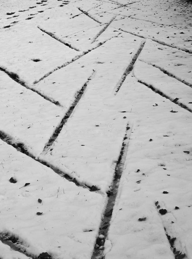 Drucke auf einem Schnee stockfotografie