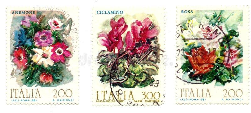 Drucke von Blumen lizenzfreies stockfoto