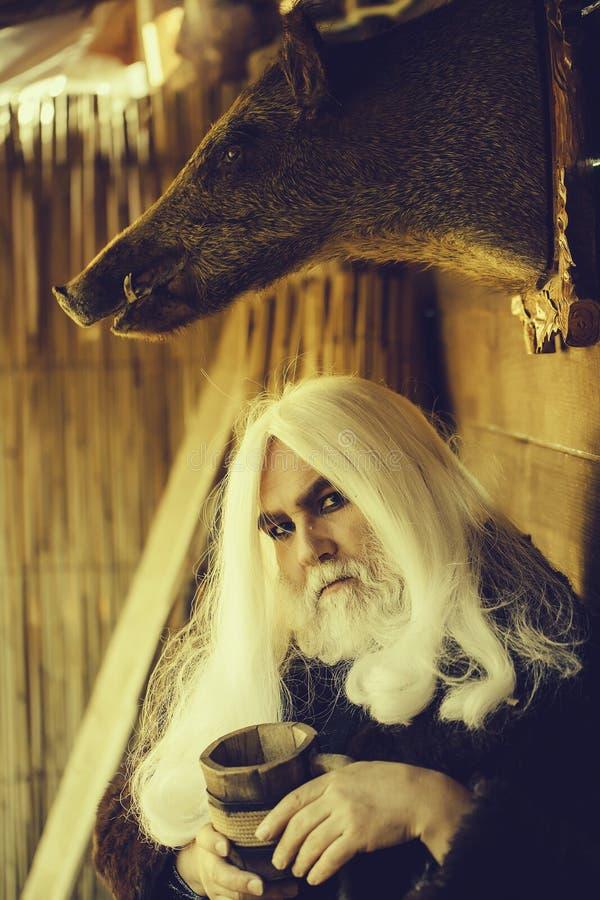 Druid i faszerująca knur głowa obrazy royalty free