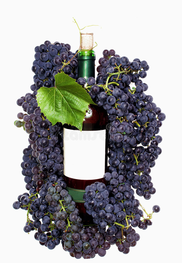Druif en wijn royalty-vrije stock fotografie