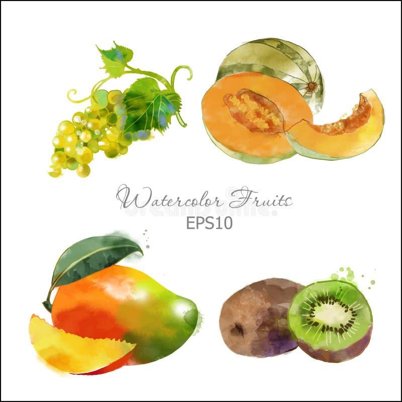 Druif, meloen, mango, kiwi vector illustratie