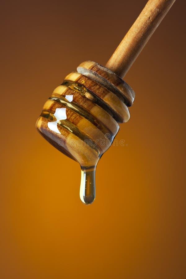 Druipende honing royalty-vrije stock afbeeldingen