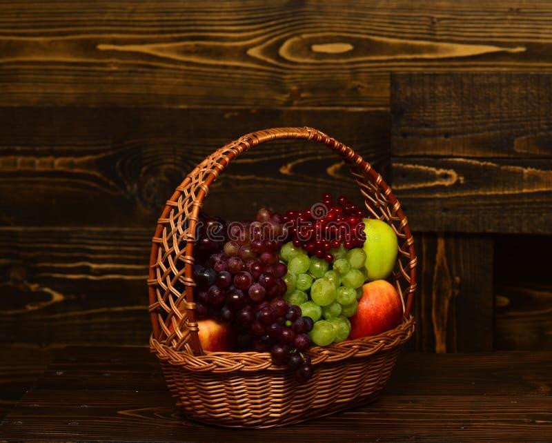Druiven en appelen in rieten mand Oogst en het tuinieren concept Mandhoogtepunt van inlands de herfstfruit op wijnoogst stock afbeelding