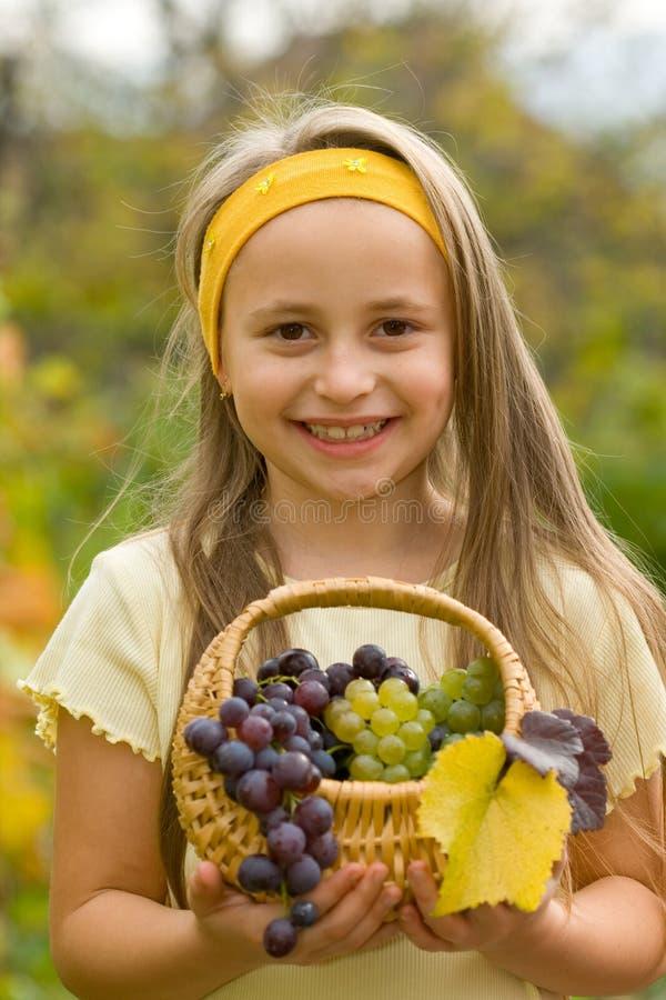 Druiven in mand royalty-vrije stock fotografie