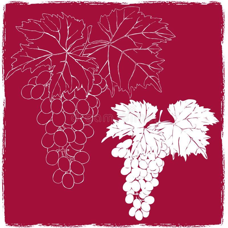 Druiven met Bladeren royalty-vrije illustratie
