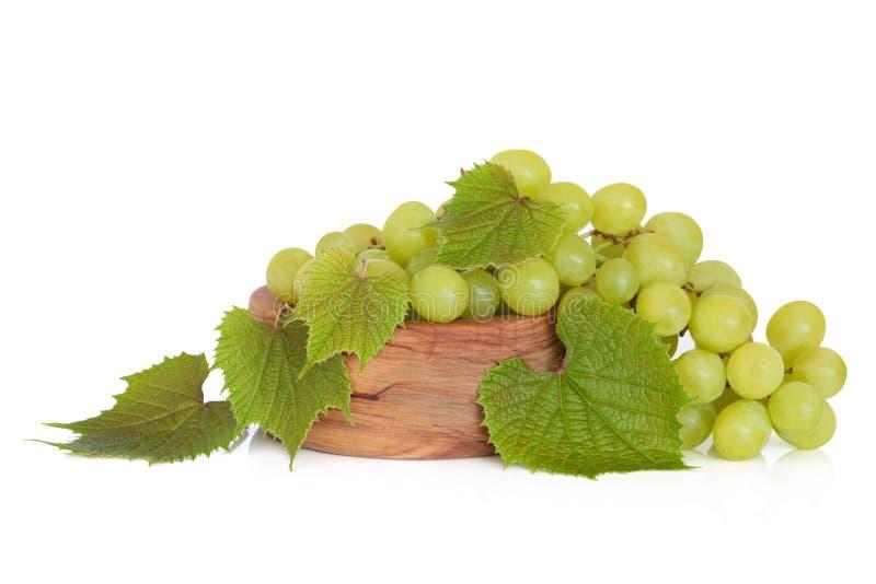Druiven op de Wijnstok royalty-vrije stock afbeeldingen