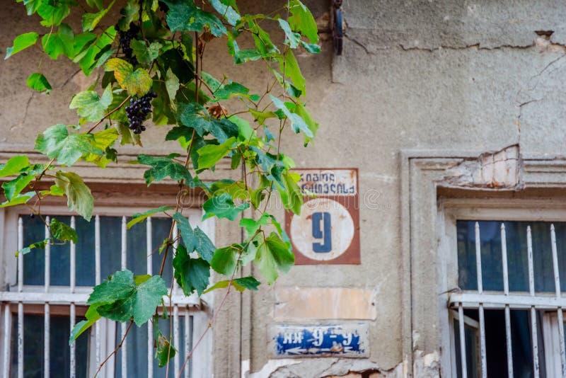 Druiven op het huis in de oude stad van Tbilisi stock foto