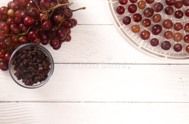 Druiven op Tray Being Prepared om in Rozijnen te ontwateren royalty-vrije stock foto's