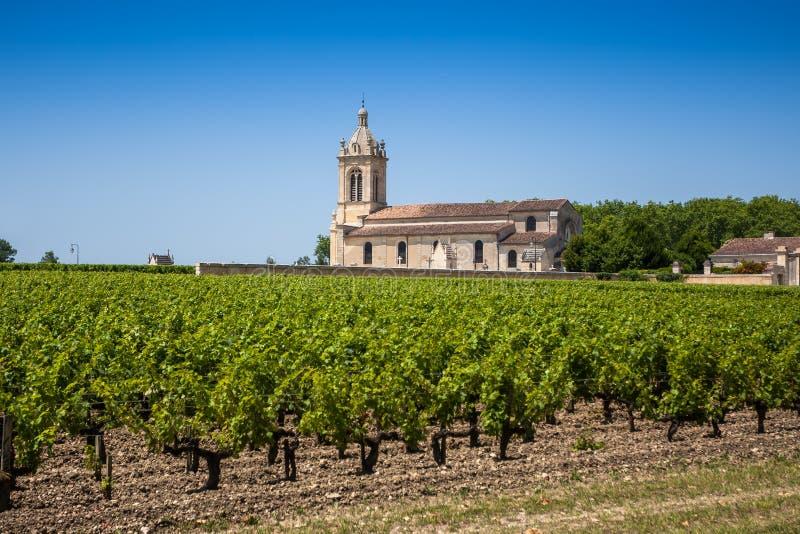 Druivengebied en oude kerk achter dichtbijgelegen Bordeaux stock foto's