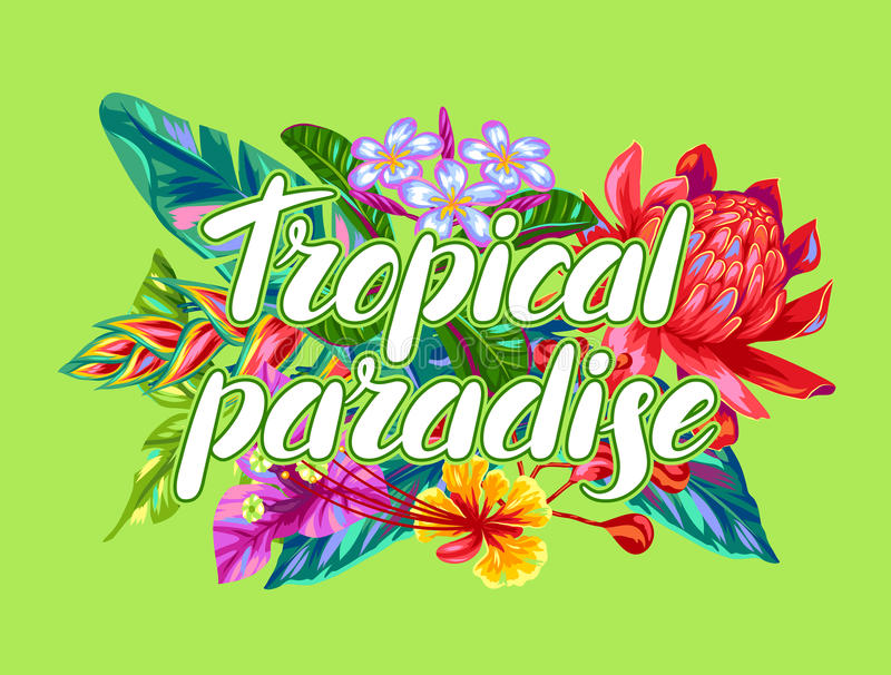 Druk met de bloemen van Thailand Tropische veelkleurige installaties, bladeren en knoppen stock illustratie