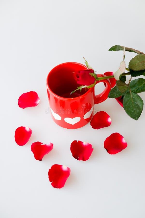 Drukowani biali serca na czerwonej filiżance i wzrastali fotografia stock