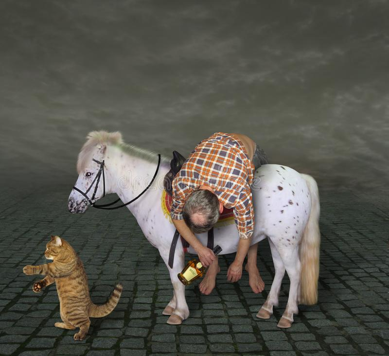 Drunk man on a pony and his cat 2 stock images