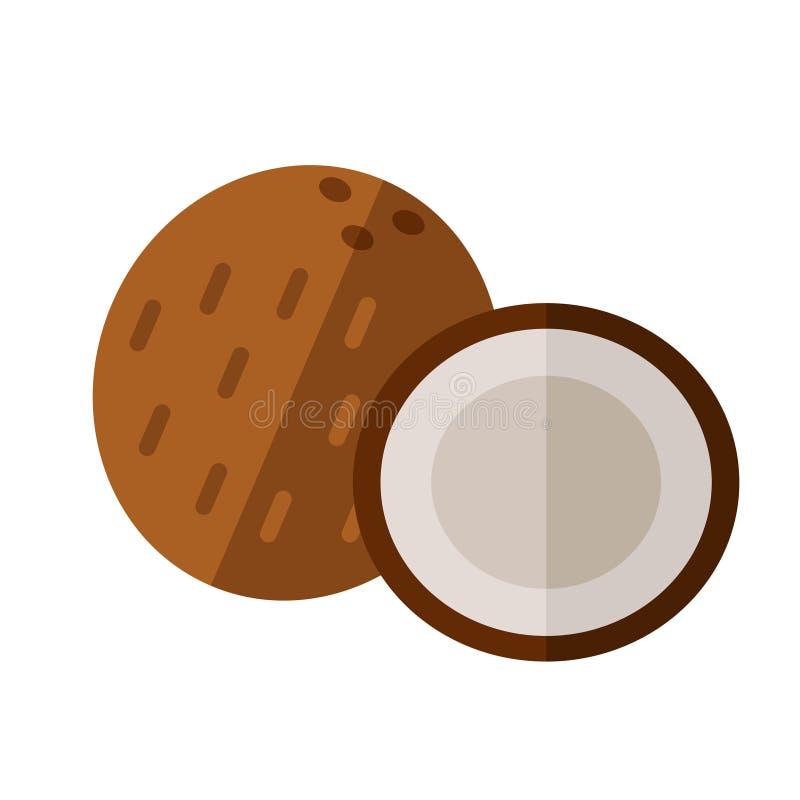 Drupas del coco con el medio ejemplo del vector de la sección Superfood c stock de ilustración