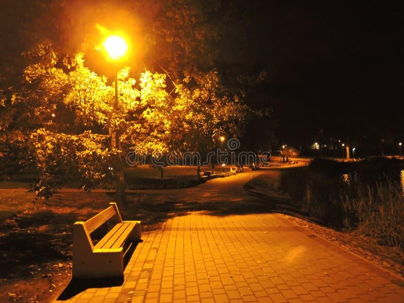 Druskininkai park at night, Lithuania. Druskininkai town park at night in autumn, Lithuania stock photos