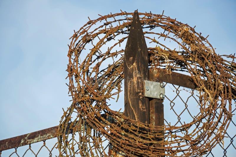 Drut kolczasty: Barbeta drut na ogrodzeniu z niebieskim niebem i wschód słońca zaświecamy zdjęcie stock