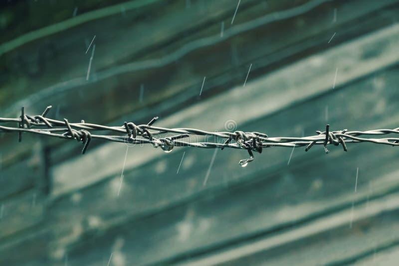 Drut kolczasty pada zimnego tła drewnianą ścianę zdjęcie royalty free