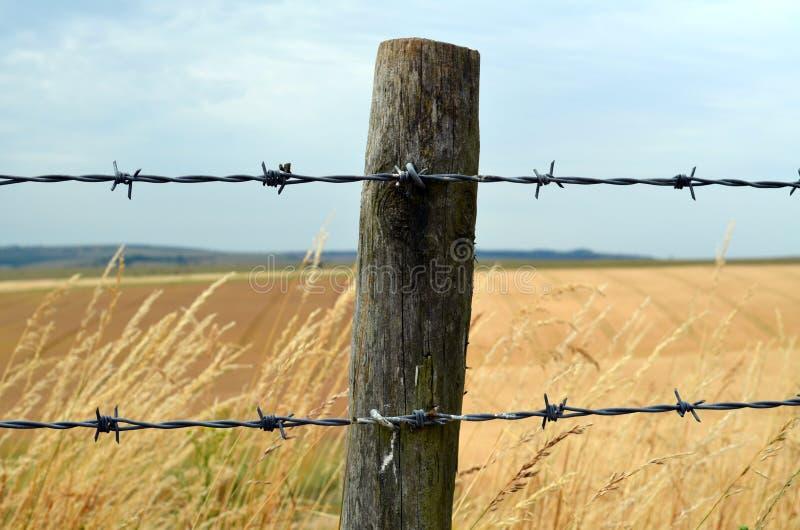 Drutu kolczastego ogrodzenie obrazy royalty free