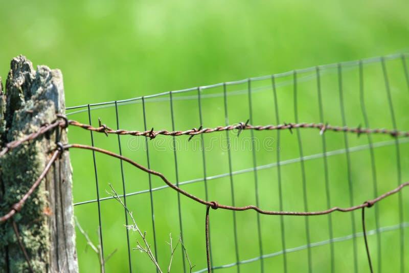Drutu kolczasty ogrodzenie zieleni polem obraz stock