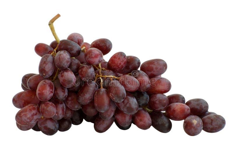 Download Druva arkivfoto. Bild av frukt, rött, druva, isolerat - 19794130