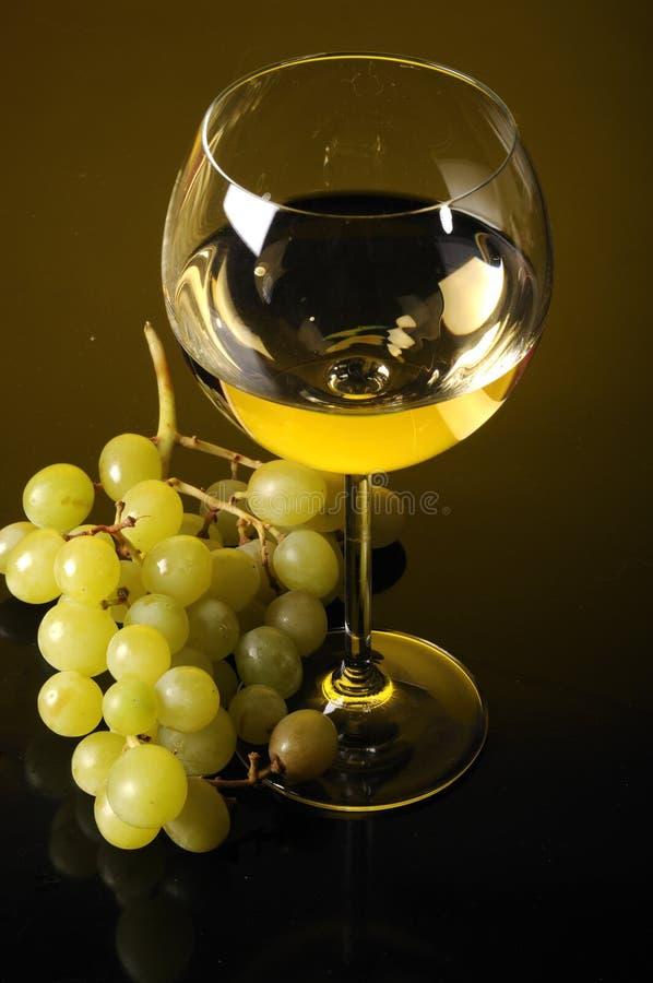 Druvor och exponeringsglas av wine royaltyfri fotografi