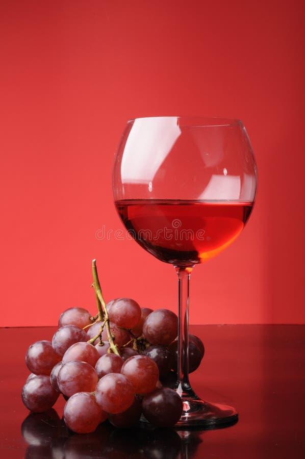 Druvor och exponeringsglas av wine royaltyfri bild