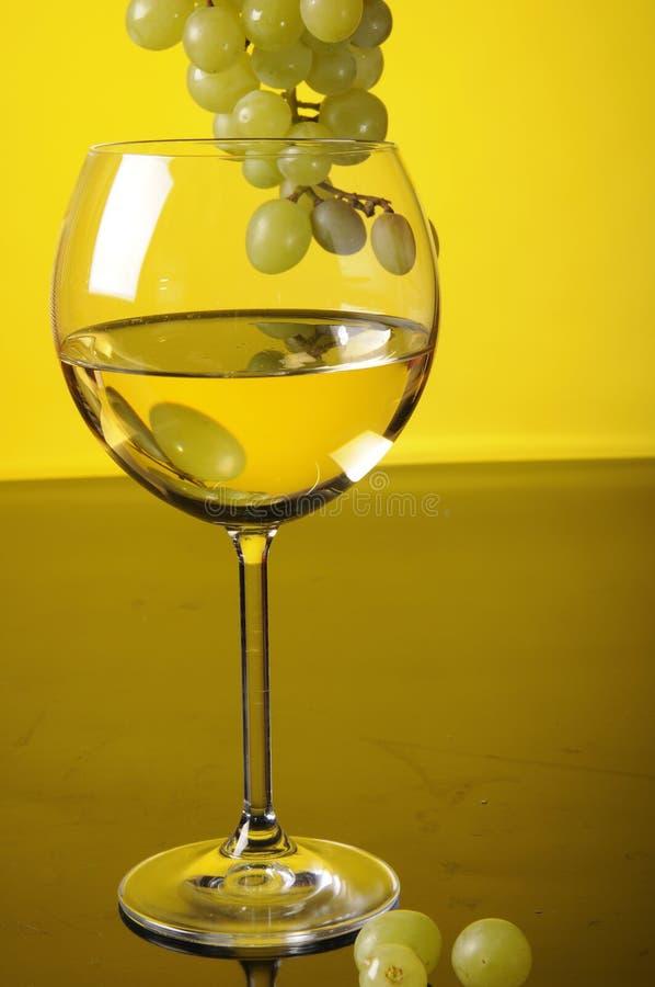 Druvor och exponeringsglas av wine royaltyfria bilder