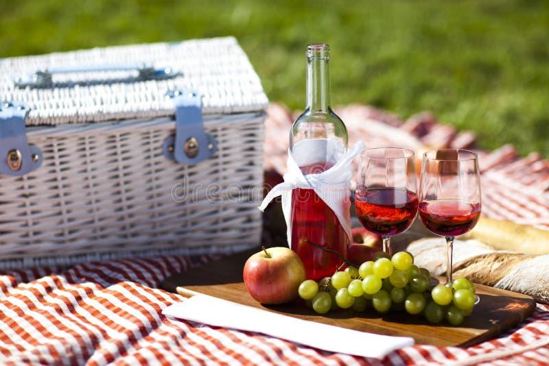 Druvor och wine royaltyfri bild