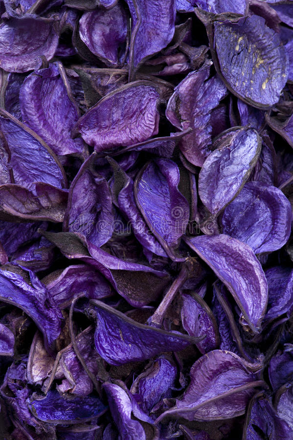 Download Dry Aromatic Plants Background Stock Image - Image: 20612461