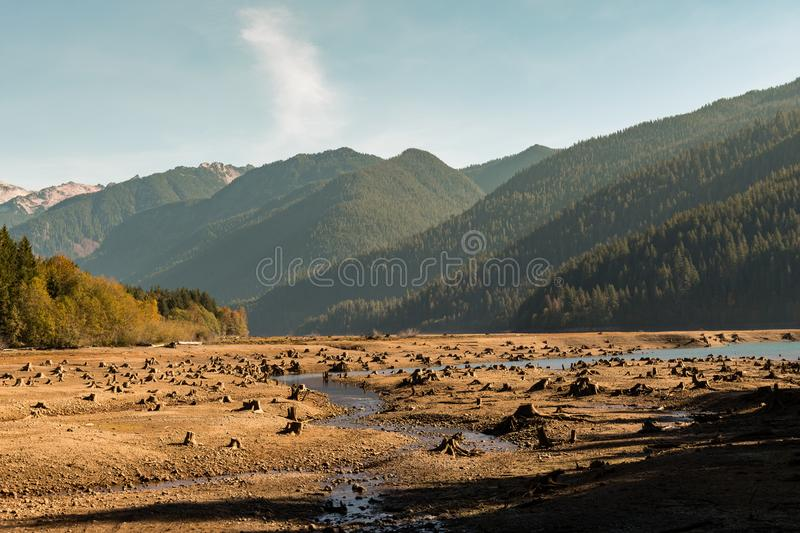 Dry Baker Lake with tree stumps into the ground that water has left visible with mountains and forest in the background stock photography