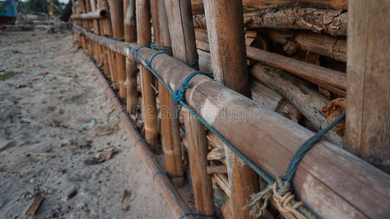 Dry bamboo on the beach, to withstand sea water abrasion stock photos