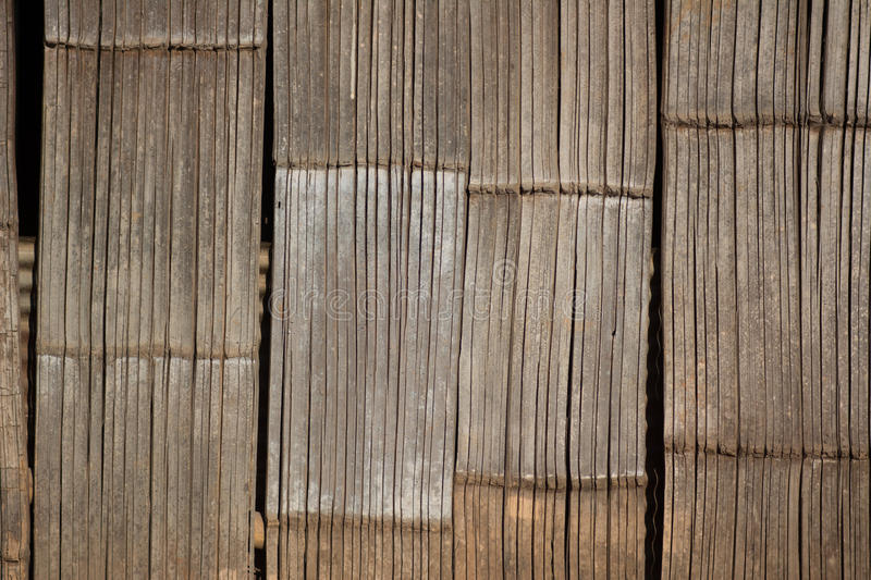 Dry bamboo stock photos