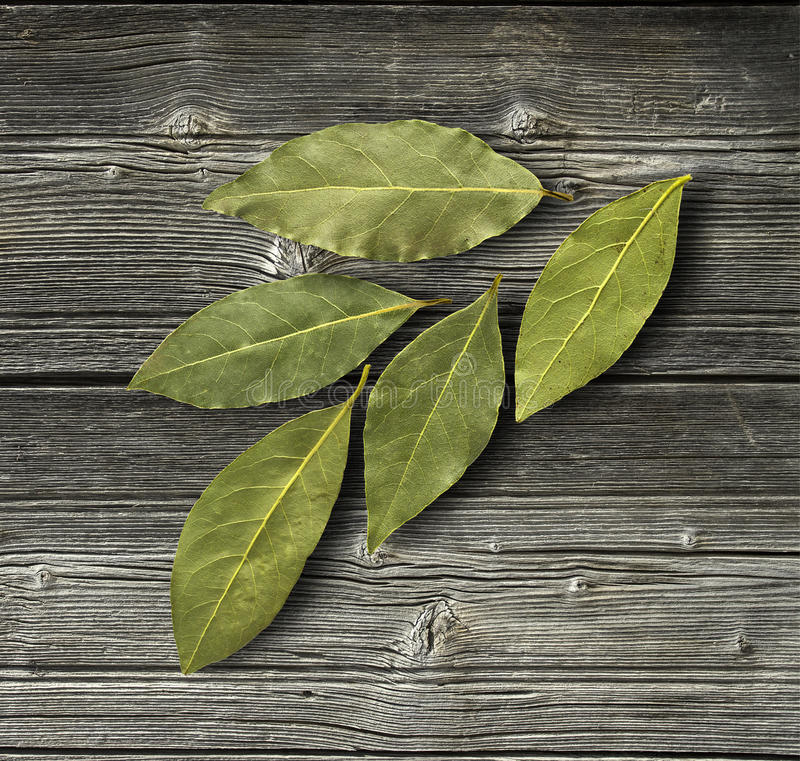 Dry bay leaf. On the wooden rustic background, top view. Bay leaf background. Daylight royalty free stock photography