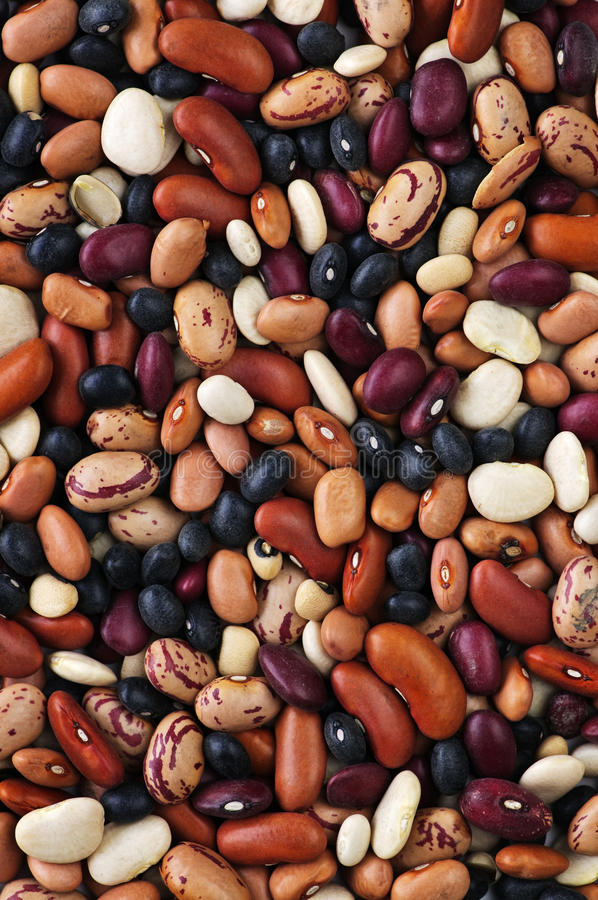 Free Dry Beans Stock Photography - 12369142