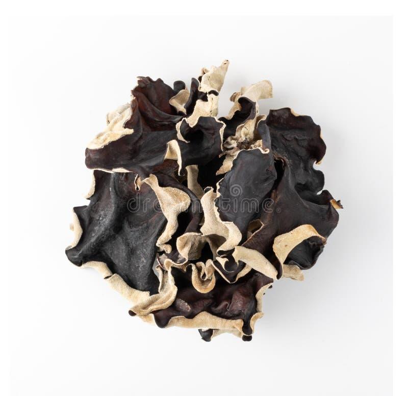 Free Dry Black Fungus, Tree Ear Or Wood Ear Mushroom Isolated Royalty Free Stock Photo - 178381025