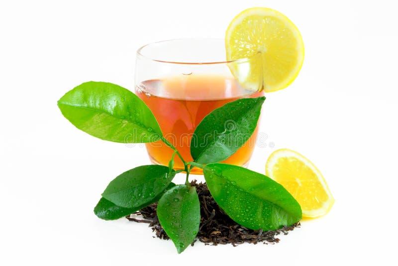 Dry black tea leaves, lemon leafs, tea on glass isolated on white.  stock photos