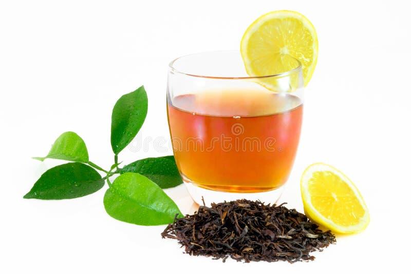 Dry black tea leaves, lemon leafs, tea on glass isolated on white.  stock images