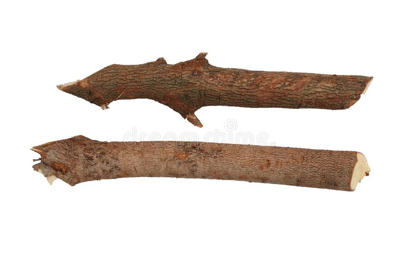 Dry branches Twigs isolated on white background, firewood, prepared for heating the house. Gathering fire wood for winter or stock image