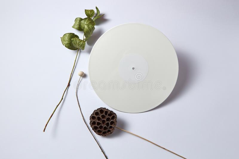 Dry branches and white vinyl audio record on a light background with copy space. Flat lay royalty free stock image