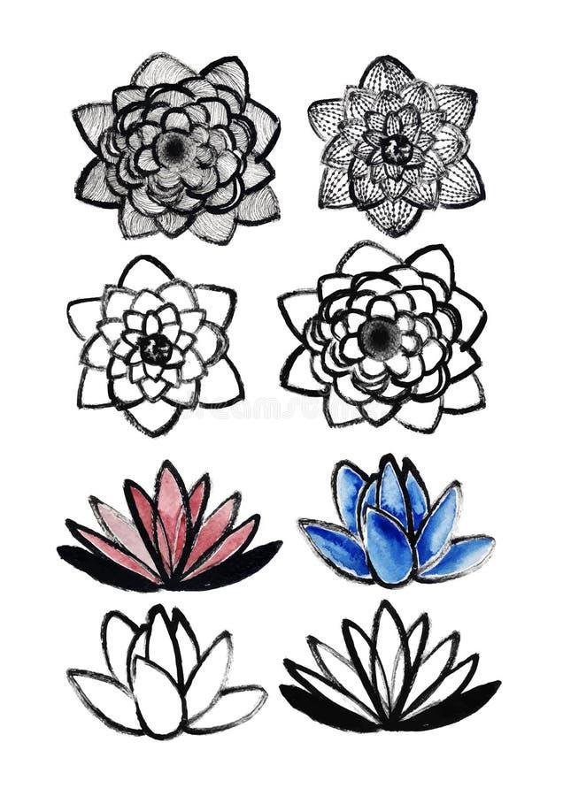Dry brush lotus set stock illustration