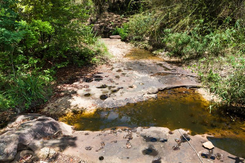 Dry canal in forest stock image
