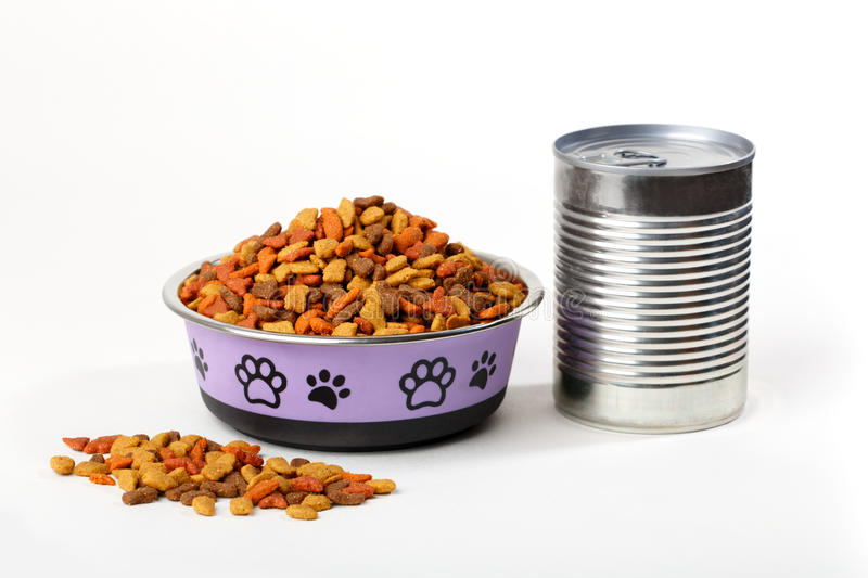 dry cat dog food in granules in cute bowl and wet canned food stock photography