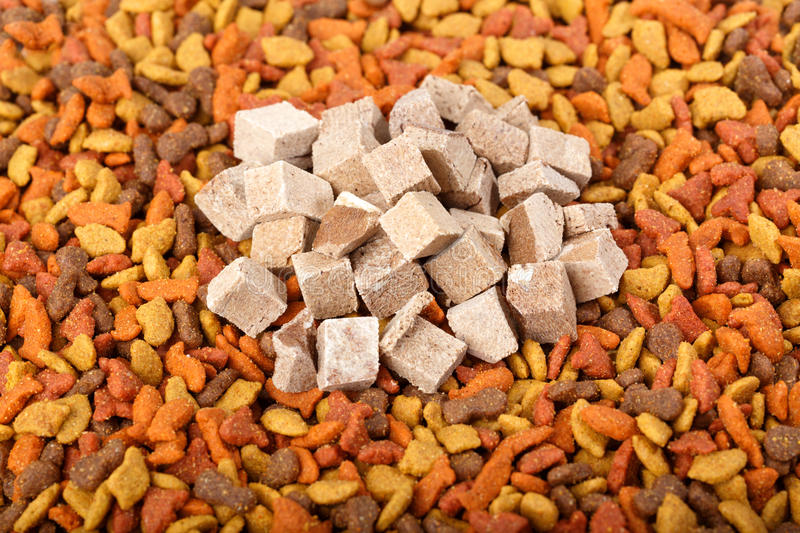 dry cat dog food in granules. Pile heap of pet treats, dried chicken liver, view from top above stock photography