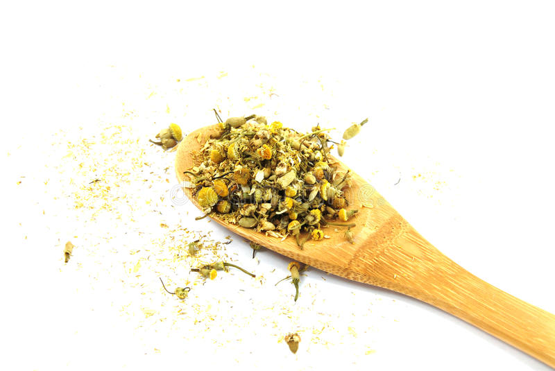 Dry chamomile stock images