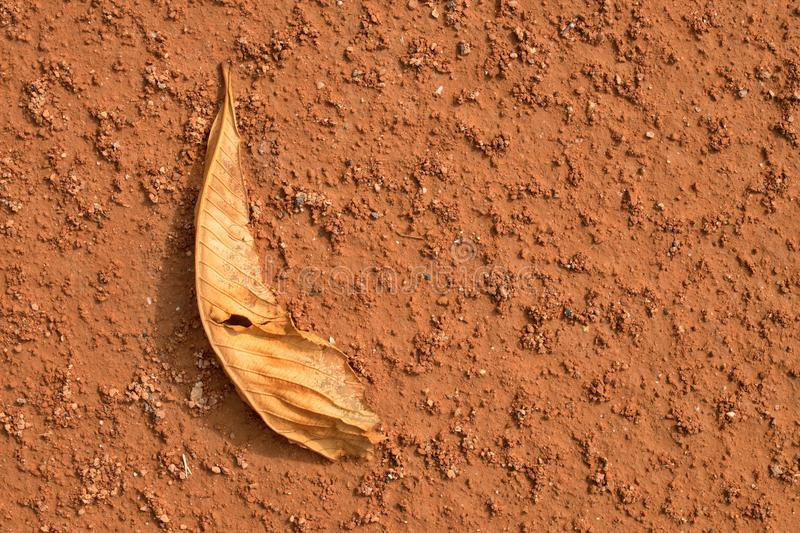 Dry chestnut leaf on tennis court. Dry red crushed surface stock photos
