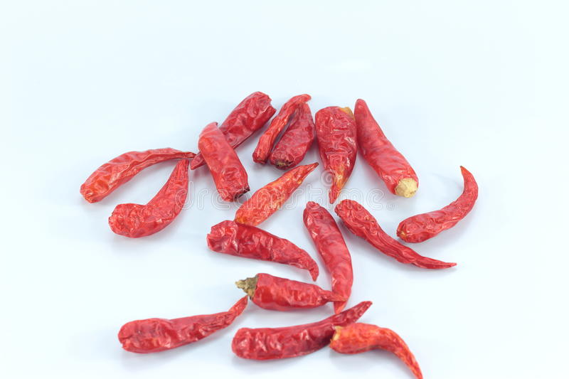 Dry chili isolated on white background. Dried chilli and brought life cooking royalty free stock photography