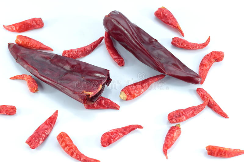 Dry chili isolated on white background. Dried chilli and brought life cooking royalty free stock photos