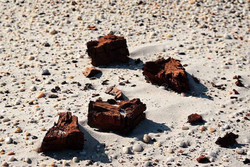 Dry Clay Sand Royalty Free Stock Photos