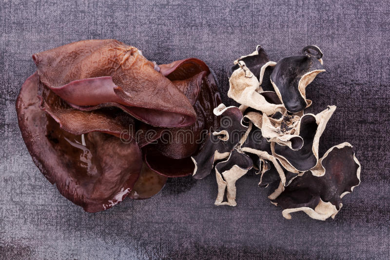 Download Luxurious Dark Jew's Ear Background. Stock Image - Image of ingredient, chinese: 29898419