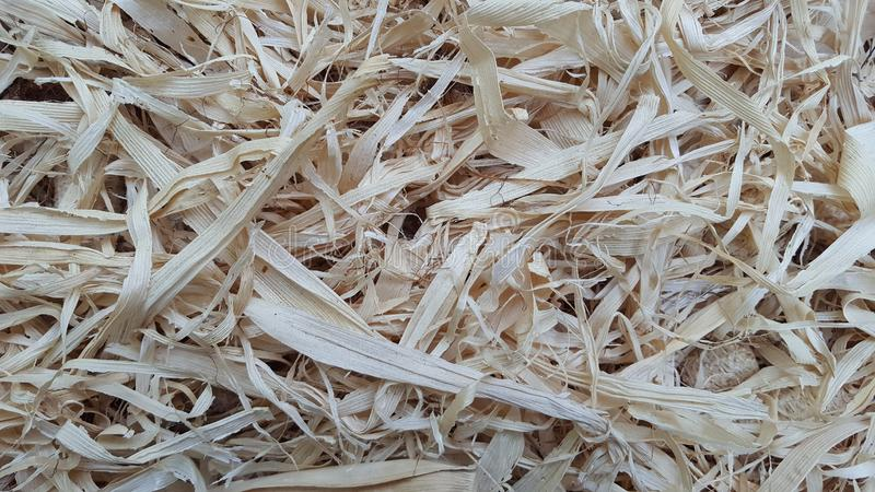 Dry corn husk, traditional cigarette making material with a unique taste. In Indonesian called `klobot royalty free stock photography