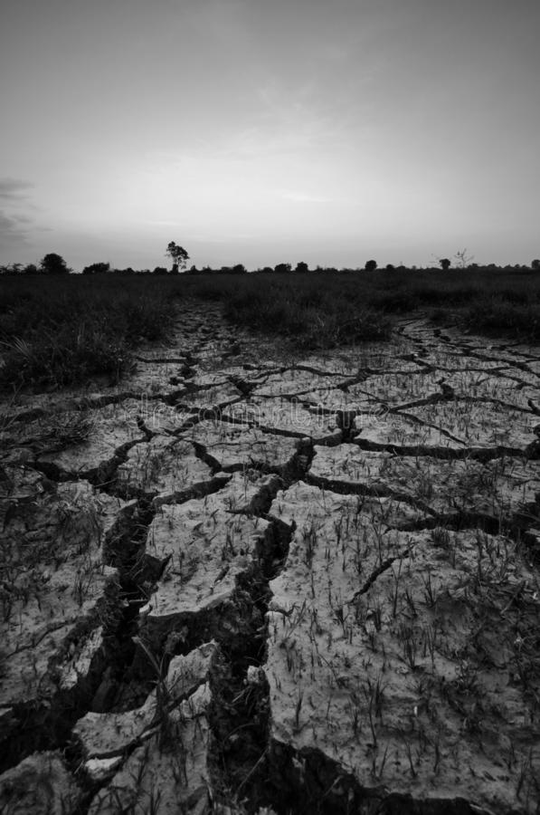 Dry cracked desert. The global shortage of water on the planet. Global warming and greenhouse effect concept. Dry cracked desert global shortage water royalty free stock image
